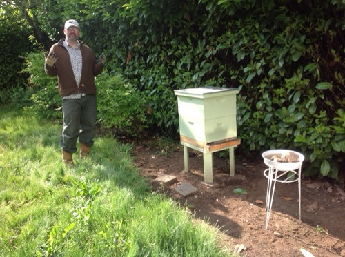 bee log, bees